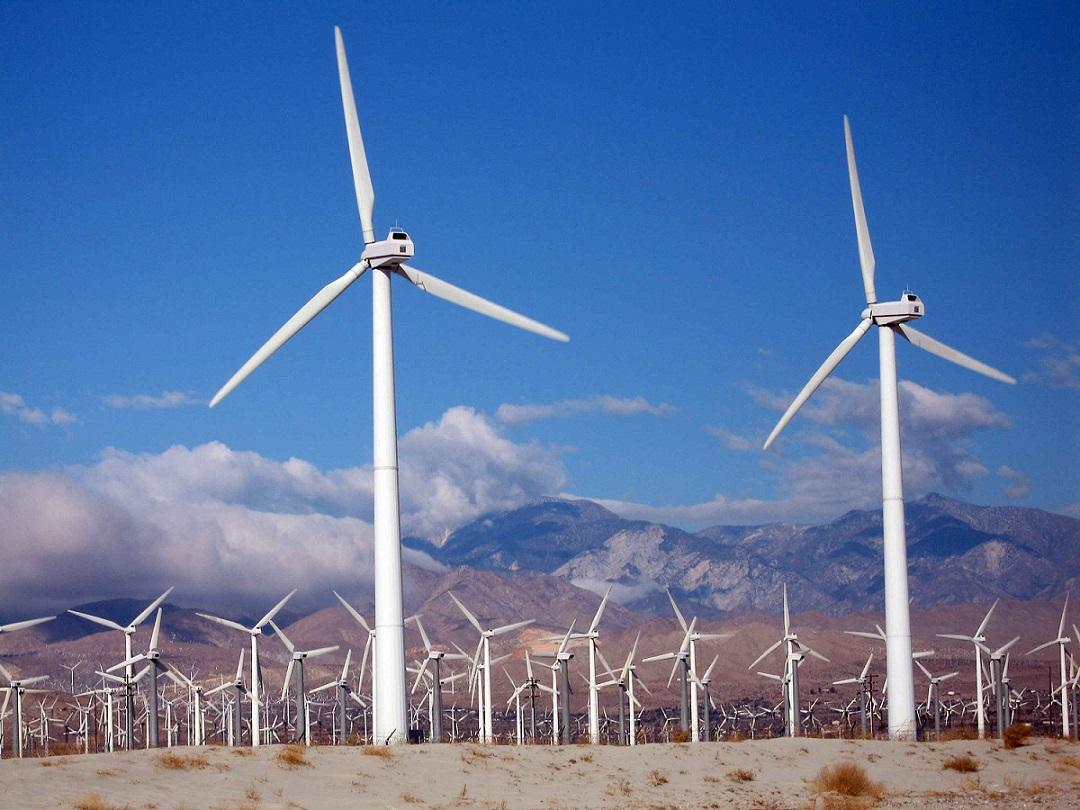 farma wiatrowa